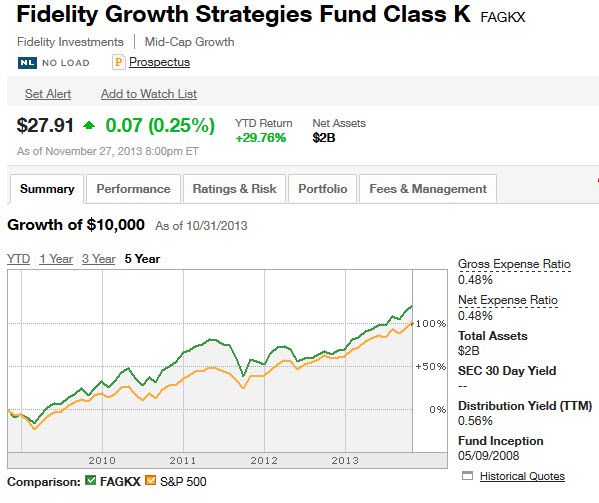 stock mutual fund - fidelity summary